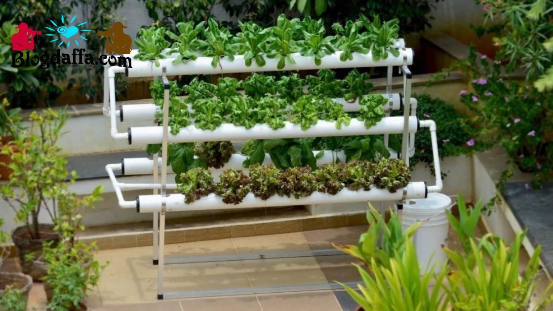 Inspirasi Sistem Instalasi Hidroponik