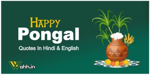 Pongal Quotes In Hindi