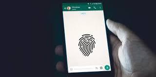Cara Mengunci WhatsApp Dengan Sidik Jari