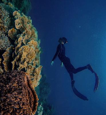 Pulau Botot :  Ekslpore Pulau Yang Indah, Potret Keindahan Coral & Aktivitas Wisata