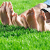 Top 10 Artificial Grass Dealer in Mumbai