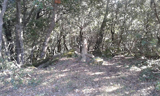 Montner (Pla de l'Estany)