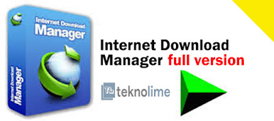Internet Download Manager 6.33 Build 3 Full Version