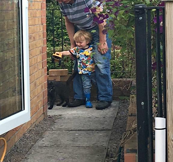 toddler-black-cat-adults-legs