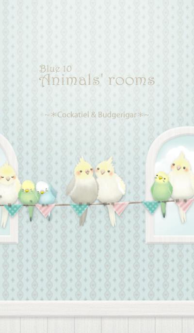 Animals' rooms[Cockatiel&budgie]Blue 10r