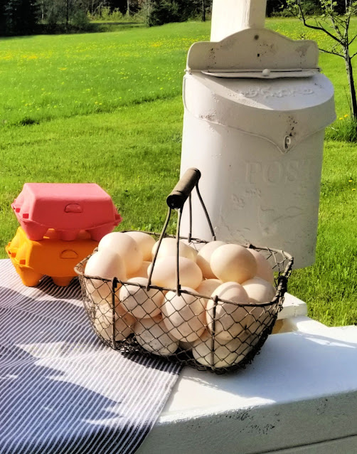 wire basket of eggs with colored egg cartons