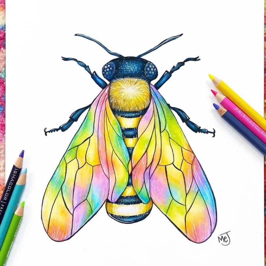 04-Multicolored-honey-bee-Morgan-Johnson-www-designstack-co