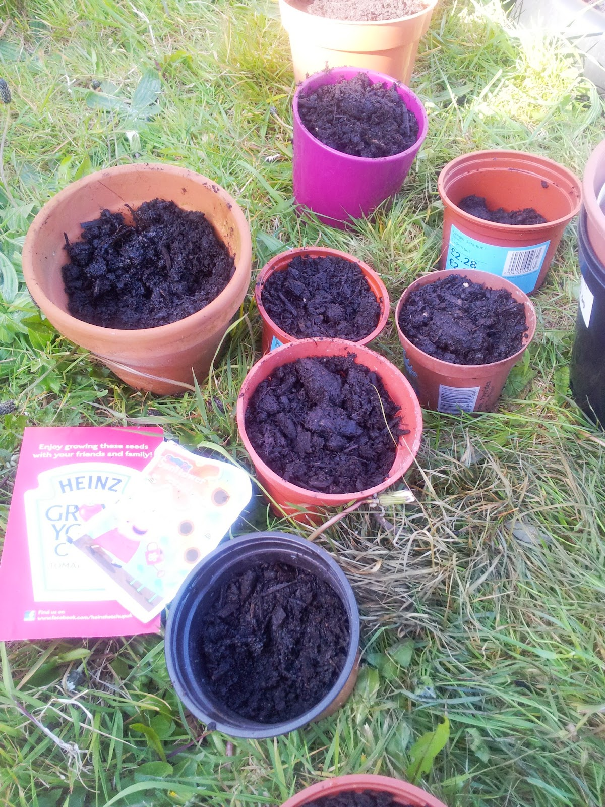 , Planting Sunflower Seeds- Messy Play for Matilda Mae