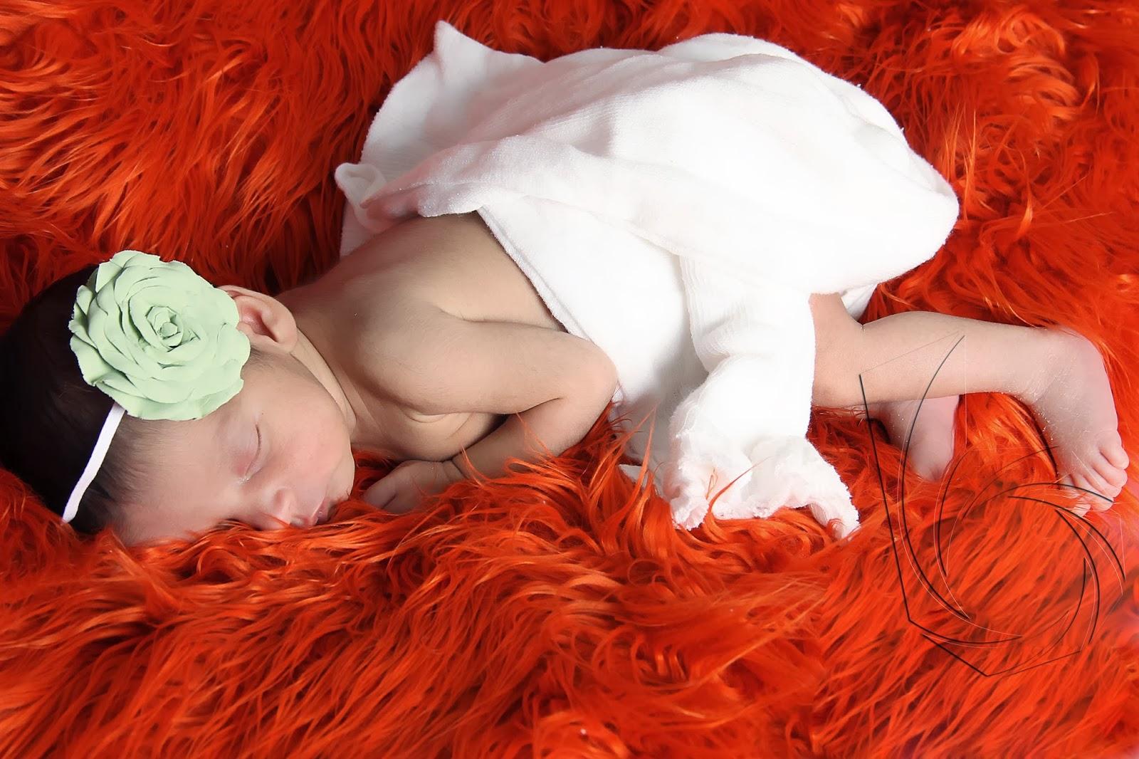 fotos new born recém nascido