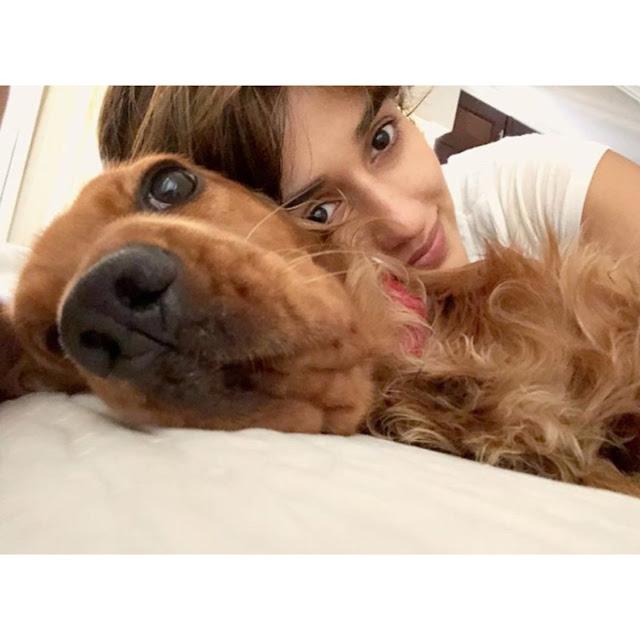 Bollywood Actress Disha Patani Latest Instagram Pics Actress Trend