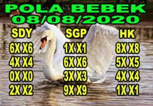 syair hk pola bebek 8 agustus 2020