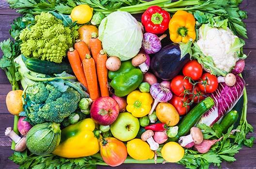 Jakich warzyw i owoców nie podawać kotu?