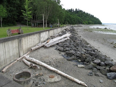 Photo of King County's Seahurst Park before shoreline bulkhead has been removed.