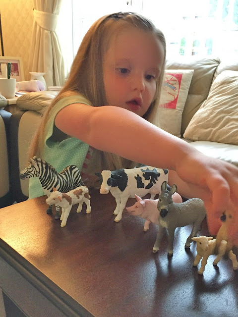Summer lining all her animals up