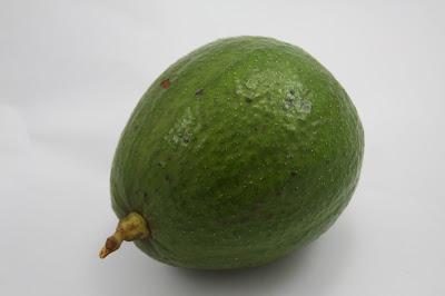 Resultado de imagem para abacate margarida