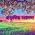Bengali Nature Poem-প্রকৃতির আনন্দ
