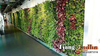 tukang vertical garden tianggadha