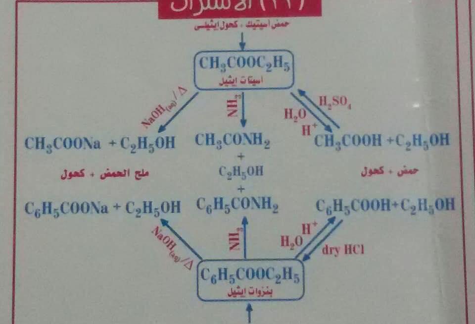 معادلات الكيمياء العضوية كلها فى مخطط عبقرى 9