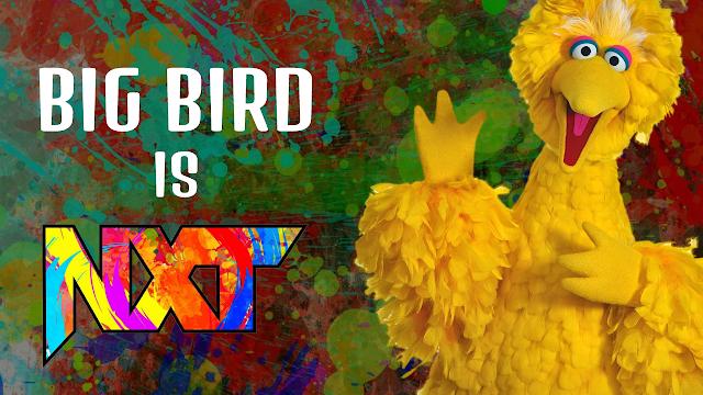 Big Bird is NXT