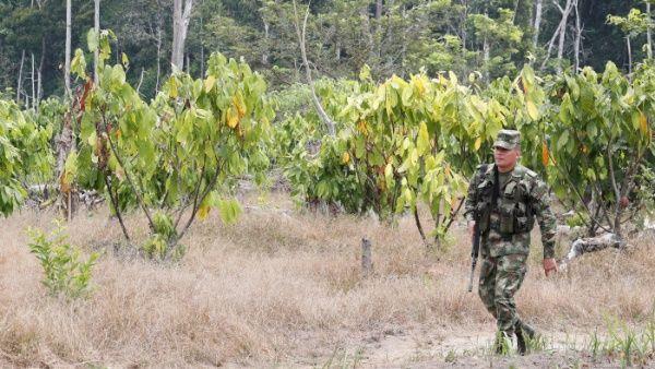 Denuncian que soldados asesinaron a dos campesinos colombianos