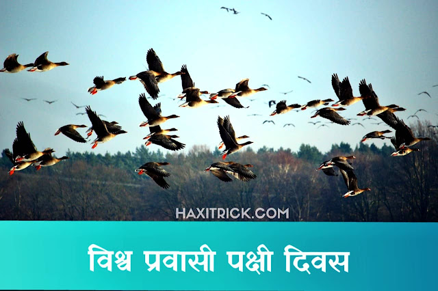 Vishva Pravaasi Pakshi Diwas