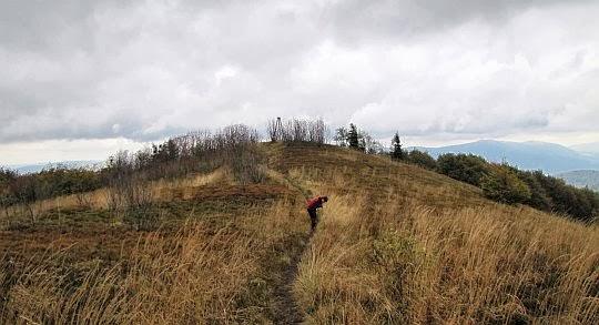 Dojście na szczyt Jasła z czerwonego szlaku.
