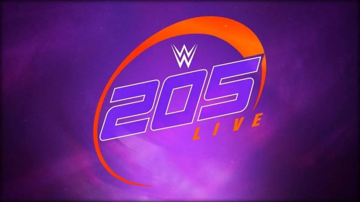 WWE 205 Live deve continuar mesmo com as demissões em massa