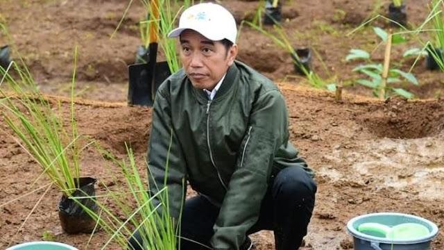 CPCS: Jokowi Terlihat Bekerja Keras, Masyarakat Jadi Puas