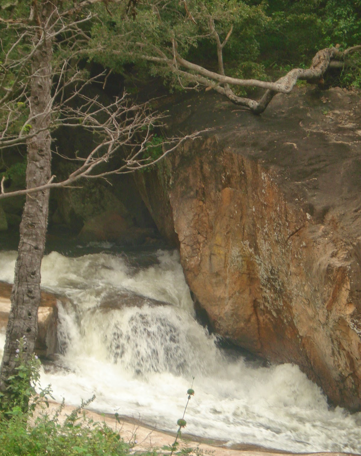 Tamilnadu Tourism: Thirumoorthy Falls (Panjalinga Falls ...