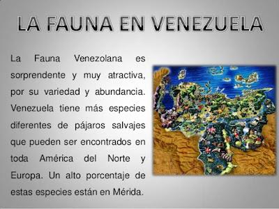 Fauna en Venezuela