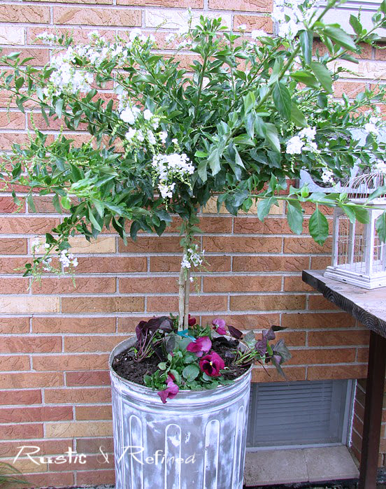 Trash to treasure container garden