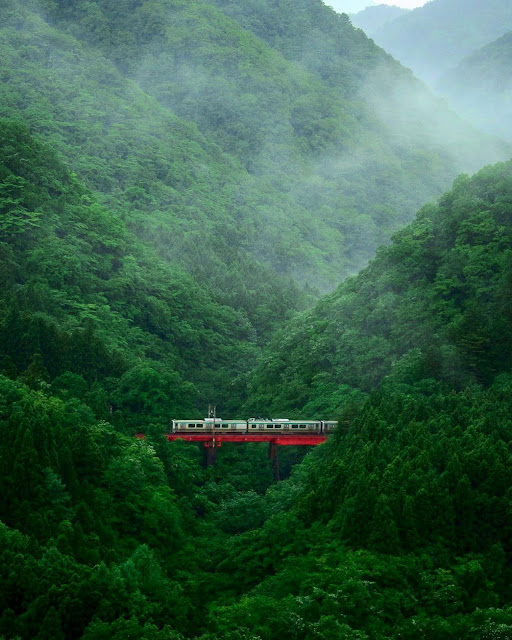 Tren en las montañas de Japón