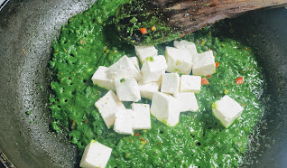 Adding paneer cubes in palak gravy for palak paneer recipe