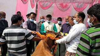 पं. दीनदयाल उपाध्याय पशु आरोग्य मेले में साढ़े चार सौ पशुओं का किया गया उपचार | #NayaSaberaNetwork