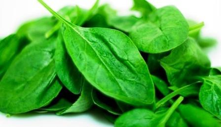 Khasiat dan manfaat sayur bayam untuk kesehatan