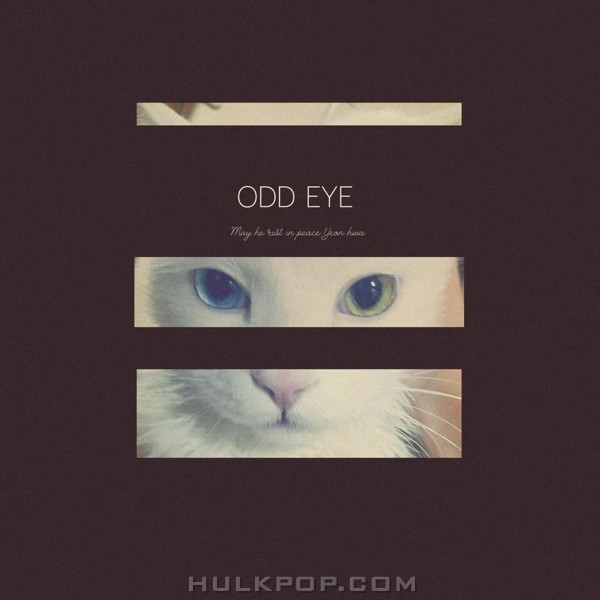 Yuppie – Odd Eye – Single