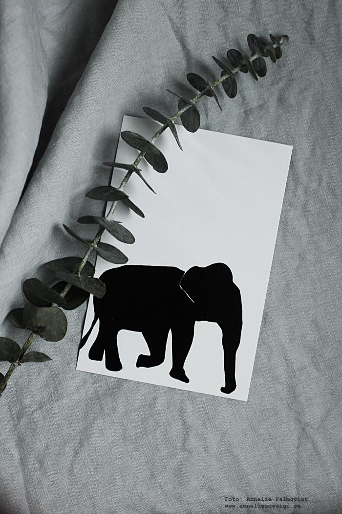 annelies design, webbutik, vykort, svartvit, svartvita, svartvitt, svart och vit, kort, webshop, nätbutik, nettbutikk, nätbutiker, monstera, elefant, elefanter, kort med text, konsttryck, poster, posters, print prints, plakat, plakater,