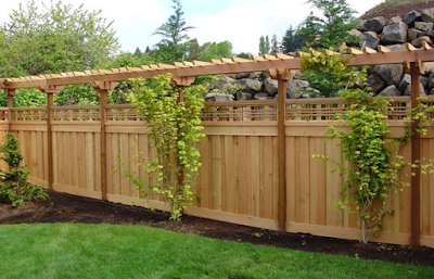 The wooden fence is also a means of vines
