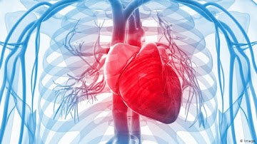 """""""Segura e eficaz"""" — Injeção de mRNA da COVID INTERROMPIDA em três países devido à inflamação do coração"""