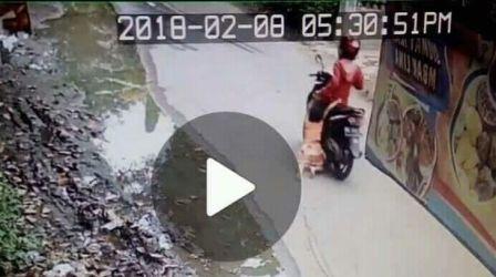Bikin Ngilu, Seorang Ibu Seret Anaknya Pakai Motor di Jalan Raya
