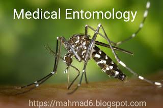 Medical Entomology,Entomology