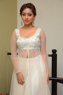 Anu Emmanuel in a Transparent White Choli Cream Ghagra Stunning Pics 103.JPG