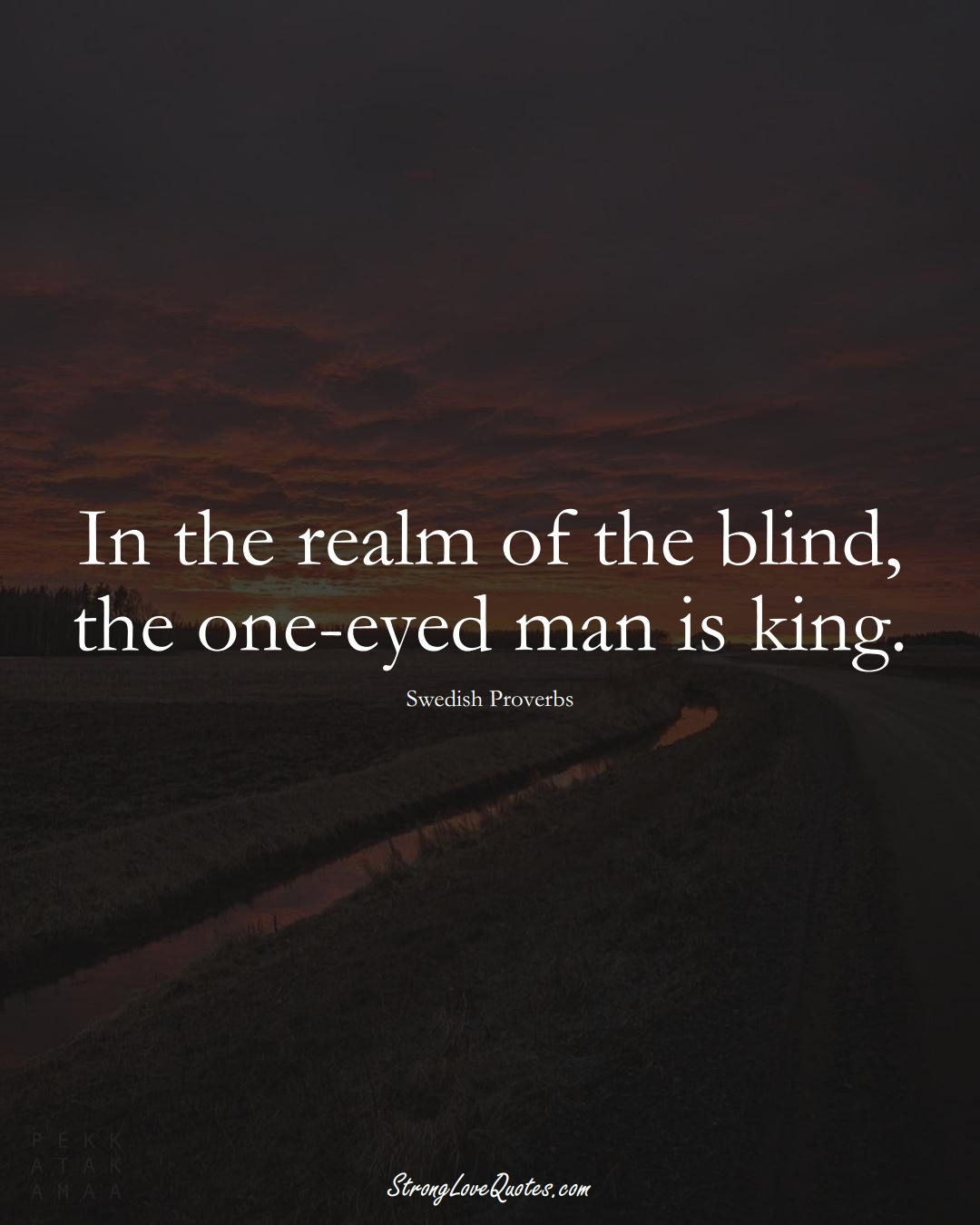 In the realm of the blind, the one-eyed man is king. (Swedish Sayings);  #EuropeanSayings