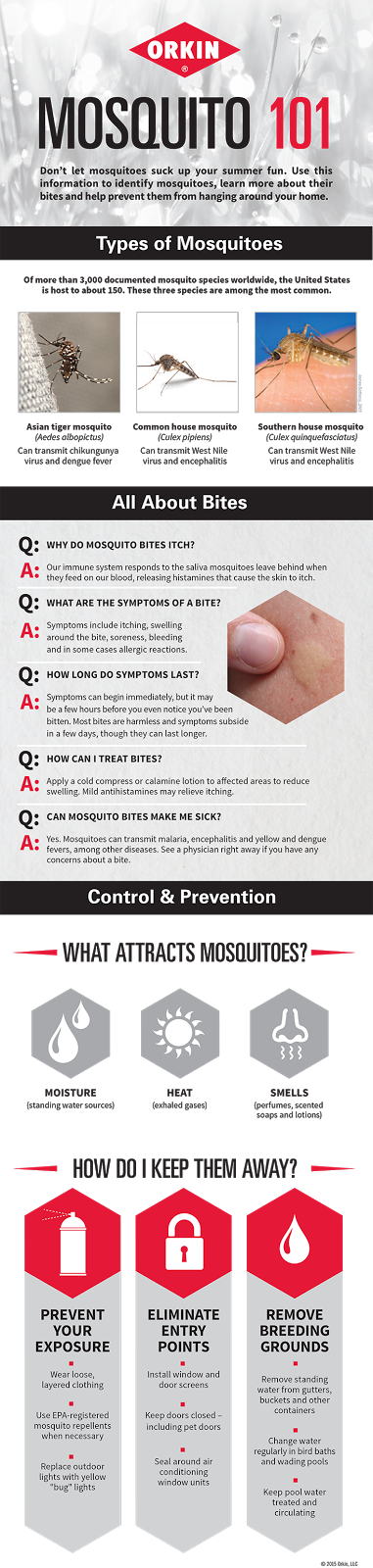 Are you wanting to do everything you can to protect your family and those around you that are expecting from the Zika virus? Find out how Orkin's treatments are the best Zika virus Precaution and why you should treat your house today
