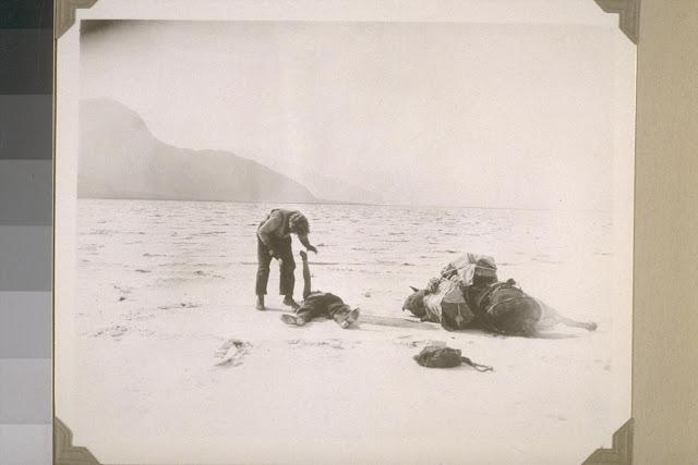 Resultado de imagem para greed 1923 pics
