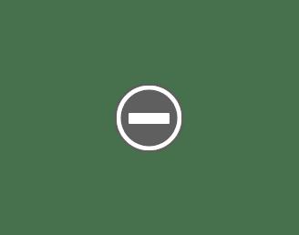 Tranh Chân Dung