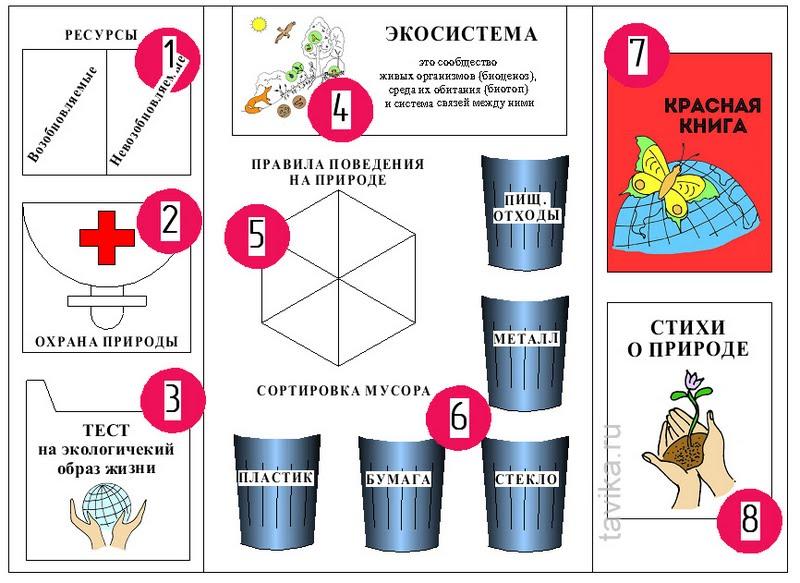 lapbook ecology