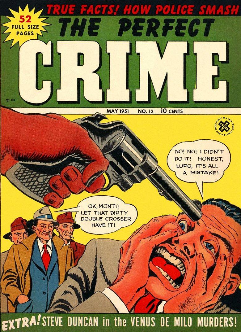 the perfect crime essay