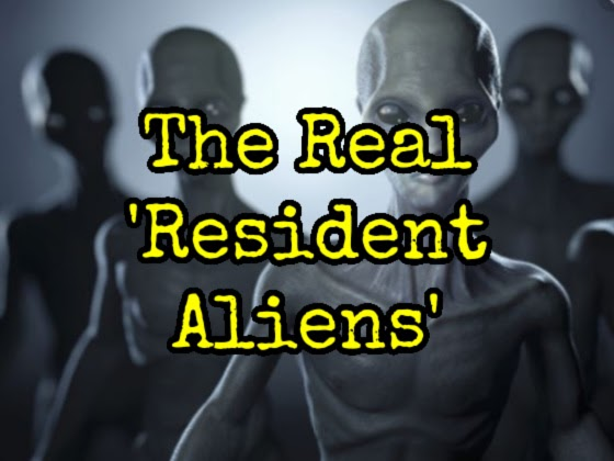 The Real 'Resident Aliens' - Part IV
