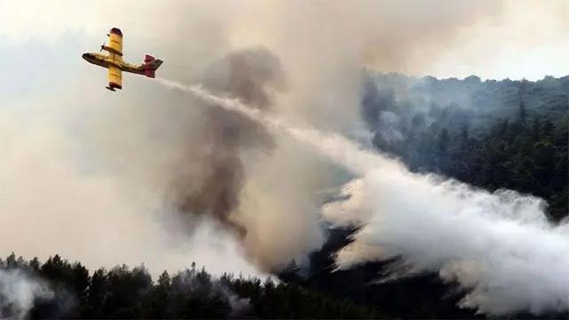 فؤاد العسالي : تمت السيطرة 80 في المائة من حريق شفشاون